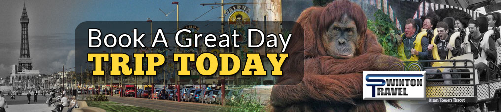 Day Trips banner